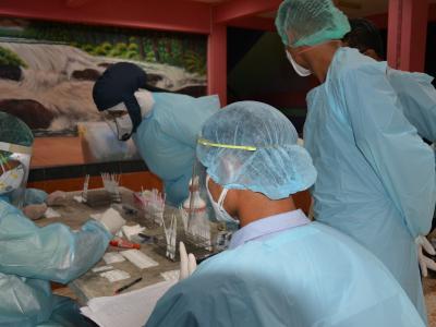 กิจกรรมเชิงรุกค้นหาผู้ป่วยโควิด 19 (สวอย) บ้านกาแร
